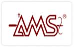 AMS SYSTEM SERVICES PTE LTD, Singapore